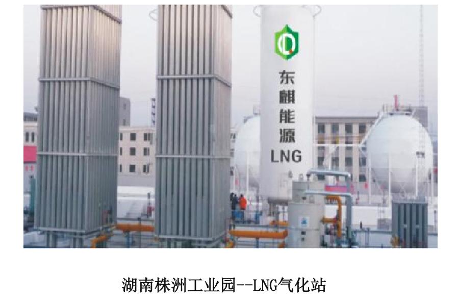 湖南东麒能源.png